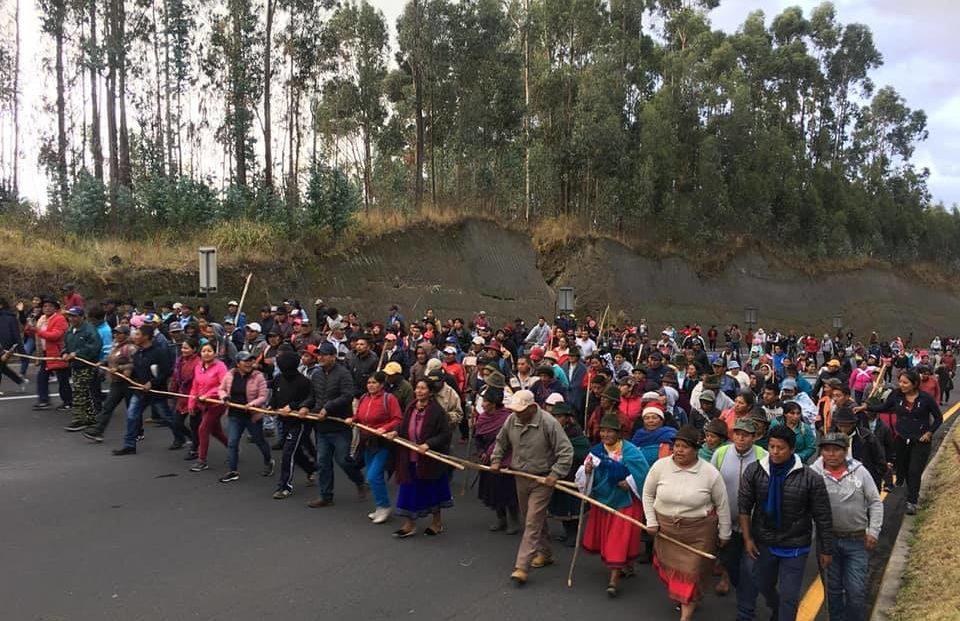"""Resultado de imagen para ecuador Ni Correa, ni Moreno; ni Nebot ni Lasso; el pueblo está contra el paquetazo"""""""
