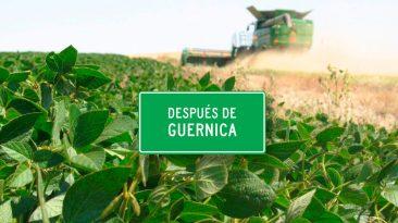 Despues de Guernica - La cuestión ambiental